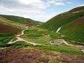 Heatherhope Valley - geograph.org.uk - 1423221.jpg