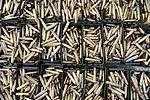 Heavy Weapons MOD 45160180.jpg