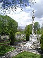 Hedon Town Cemetery - geograph.org.uk - 784504.jpg