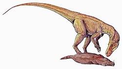 meaning of herrerasaurus