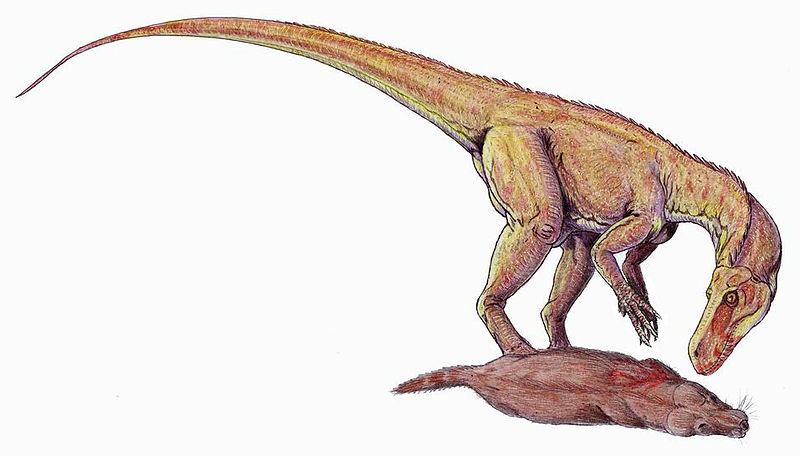 Herrerasaurus ischigualastensis, um dos primeiros dinossauros de Ischigualasto - Fonte: Dmitry Bogdanov