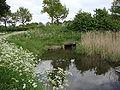 Heumen (Gld, NL) Leigraaf, gevoed vanuit Maaswaalkanaal.JPG