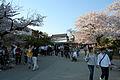 Himeji castle April 13.jpg