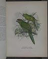 History of the birds of NZ 1st ed p060-2.jpg