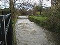 Hogsmill River in Kingston upon Thames - geograph.org.uk - 1170134.jpg