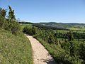 Hoher doernberg alpenpfad blick habichtswald ds wv 06 2010.jpg