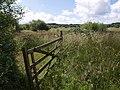 Hollow Moor - geograph.org.uk - 489014.jpg