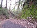 Holloway Lane, Haldon.jpg