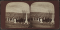 Horror Village, N.Y, from Robert N. Dennis collection of stereoscopic views.png