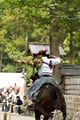 Horse3-vi.jpg