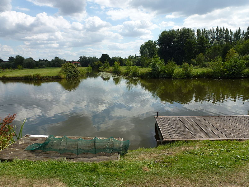Houlle (Pas-de-Calais) rivière La Houlle