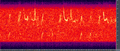 Humpback song spectrogram.png