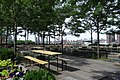Hunters Point South Pk td (2019-06-08) 039 - Cafe Terrace.jpg