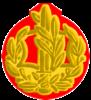 IDF RASAR Yam.png