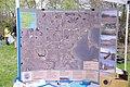 IMGP5559 (5680369201).jpg