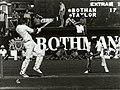Ian Botham batting vs NZ.jpg