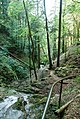 Ibachfälle - panoramio.jpg