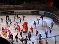 Ice Hockey French Cup 2008 09.JPG