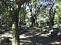 Iguape - SP - panoramio (293).jpg