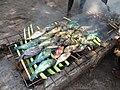 Ikan Kakaktua.jpg