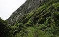 Ilha das Flores P5260041 (35621107880).jpg