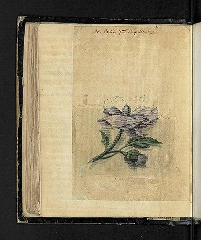 Illustration 9 extraite du Manuel sur l'art de la tapisserie par Mr Deyrolle, ancien chef d'atelier aux Gobelins.jpg