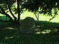 Im Schatten eines kleinen Gehölzes entspringt die Ostgünz. - panoramio.jpg