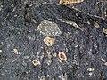 Impact breccia (Sandcherry Member, Onaping Formation, Paleoproterozoic, 1.85 Ga; High Falls roadcut, Sudbury Impact Structure, Ontario, Canada) 40 (46843419265).jpg