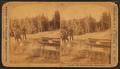 Ingersoll Spring (Bob), by Ingersoll, T. W. (Truman Ward), 1862-1922 2.png