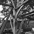 Interieur, schuur (slechte toestand), houtconstructie, gebintbalkschoren, gebinttussenstijl - Vessem - 20001884 - RCE.jpg