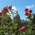 Invalides Et Roses.jpg