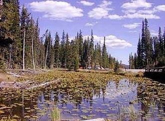 Isa Lake - Image: Isalake