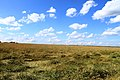 Iskitimsky District, Novosibirsk Oblast, Russia - panoramio (32).jpg