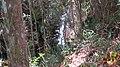 Itabirito - State of Minas Gerais, Brazil - panoramio (4).jpg