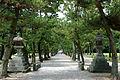 Izumo-taisha22s3200.jpg