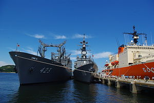 JS Tokiwa (AOE-423) and JS Takanami (DD-110) at Yokosuka, -7 Aug. 2010 a.jpg