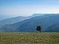 Jalta mount reserve ridges.jpg