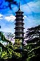 Japanese Pagoda (72812931).jpeg