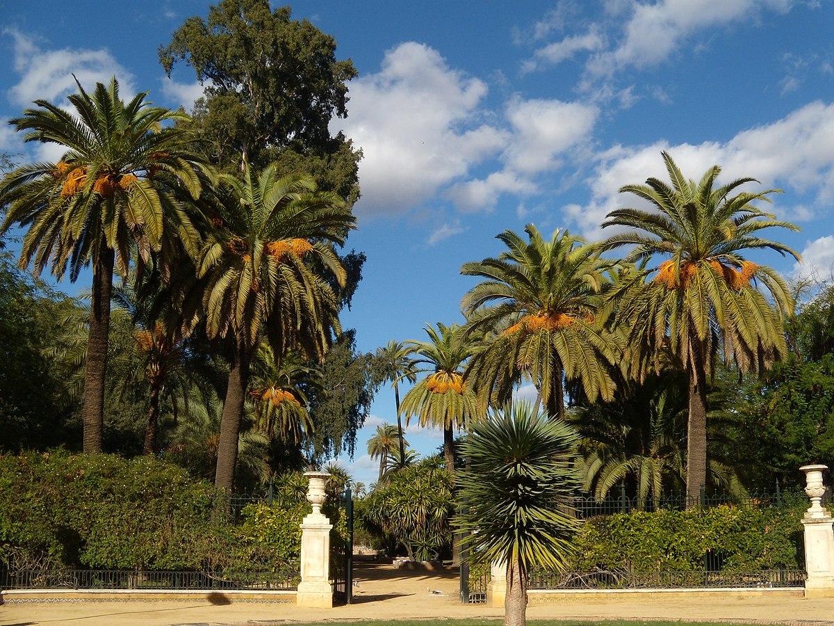 Jardins de murillo et promenade de catalina de ribera for Jardines de murillo