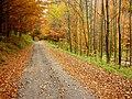 Jeseň nad Slaskou - panoramio.jpg