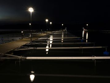 Jetty at Rixö Marina on a December afternoon.jpg