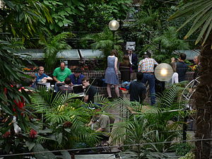 Jimmy Wales being interviewed in the Barbican Conservatory 2014-08-06 01.jpg