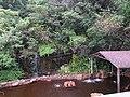 Jiujinshan Zongdu Hotspring 舊金山總督溫泉 - panoramio.jpg