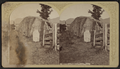John Brown's Grave, North Elba, by Stoddard, Seneca Ray, 1844-1917 , 1844-1917.png