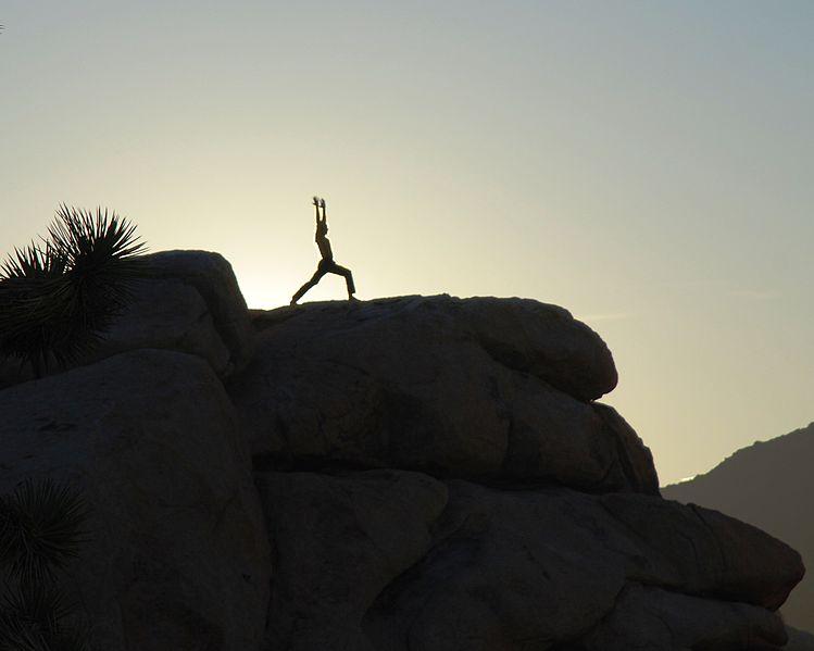 File:Joshua Tree yoga - warrior 1b.jpg