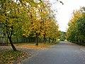 Jugla, Tirzas iela, Riga, Latvia - panoramio (3).jpg