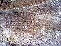 KHANDAGIRI AND UDAYGIRI Cave Inscriptions 1.jpg