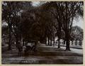 KITLV - 9902 - Lambert & Co., G.R. - Singapore - The Hooge Pad at Makassar, Sulawesi - circa 1910.tif