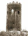 Kamianieckaja vieža. Камянецкая вежа (1903).jpg