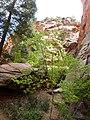 Kanarra Canyon, DyeClan.com - panoramio (11).jpg